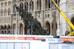 """Weihnachtsbaum am Rathausplatz: Spektakuläre Fällung mitten am """"Wiener Eistraum"""""""